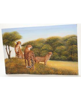 Leopards on the Savannah